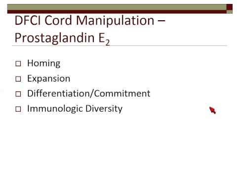Update in Umbilical Cord Blood and Haploidentical Stem Cell Transplantation