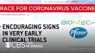 COVID-19 vaccine sees early positive results