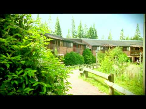 Welcome to Center Parcs - Discover Our Outdoor Activities