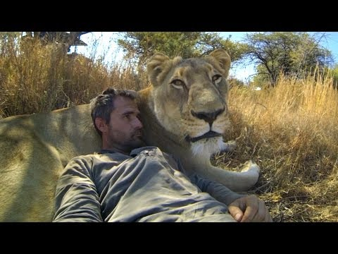Thumbnail: GoPro: Lions - The New Endangered Species?