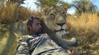 Repeat youtube video GoPro: Lions - The New Endangered Species?