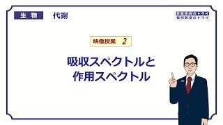 【高校生物】 代謝2 吸収スペクトルと作用スペクトル(17分)