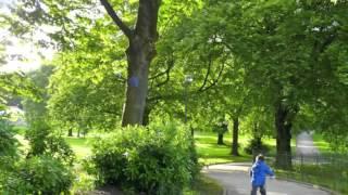 Popular Videos - Blackburn & Corporation Park, Blackburn