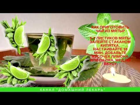 Чай с мятой: польза и вред - Домашний лекарь - выпуск № 101