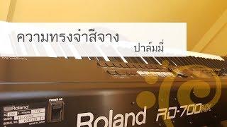 ความทรงจำสีจาง Piano cover by BellpianoPop ^ ^