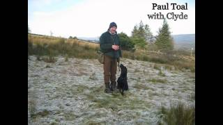 2-instruction In Handling A Finished Altiquin Labrador Retriever