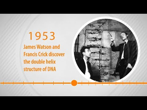 Human Genome Timeline Animation