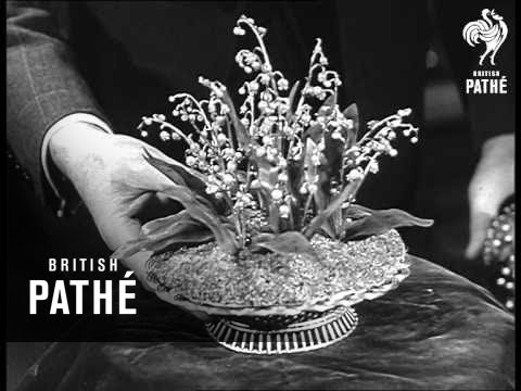 Tsar's Eggs (1950)