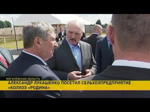 Смотреть Александр Лукашенко посетил Белыничский район онлайн