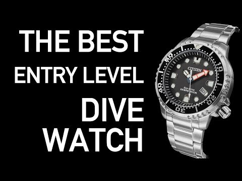 What Is The BEST Entry Level Dive Watch | Citizen Promaster Diver BN0150 Review
