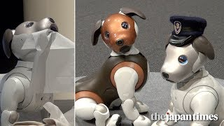 Sony Corp. unveiled the latest functions to its signature dog robot...