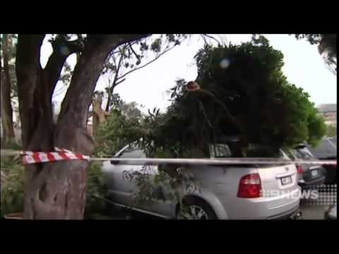 Wild Melbourne Weather - Nine News 24/06/2014