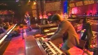 The Wallflowers - The Beautiful Side of Somewhere Live 2005