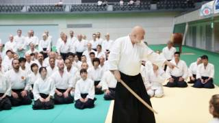 12th International Aikido Federation Congress - Class Highlights: Ulf Evenas