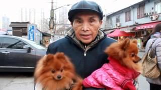 Жаренные Каштаны + Паста Карбонара в Китае