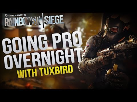 Becoming a Pro Overnight With TuxBird | Rainbow Six: Siege