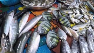 Tukuran Fish Market