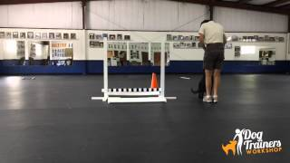Retrieve On Flat And Broad Jump: Dog Training With Connie Cleveland