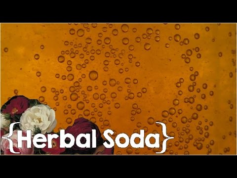 Does it Taste Good? ║ How to Make Medicinal Herbal Soda │Healing at Home #5