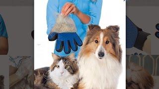 Перчатка для снятия шерсти с домашних животных купить. Лучшее средство