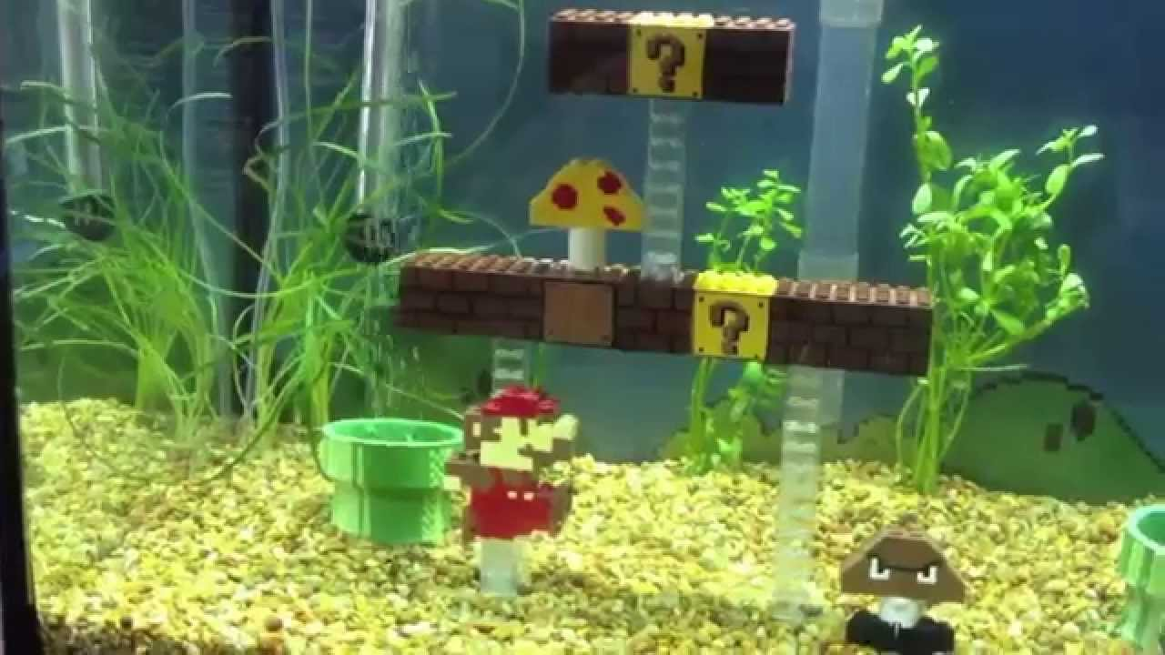 Mario fish tank youtube for Youtube fish tank