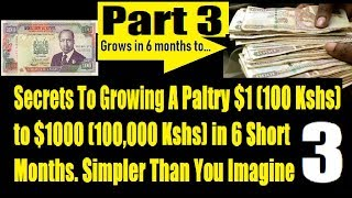 How A 100 Kenya Shillings Can Make You 100K In Less Than 6 Months Part 3