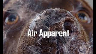Big Picture Science: Air Apparent - 22 Oct 2018