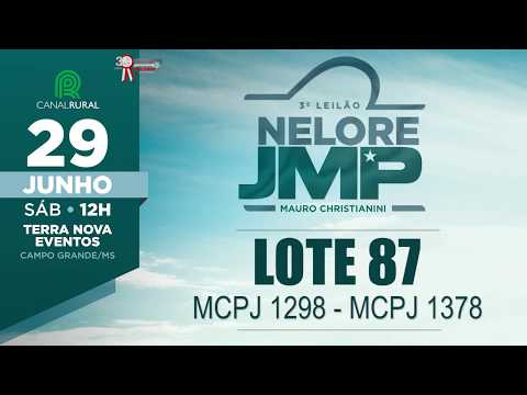 LOTE 87