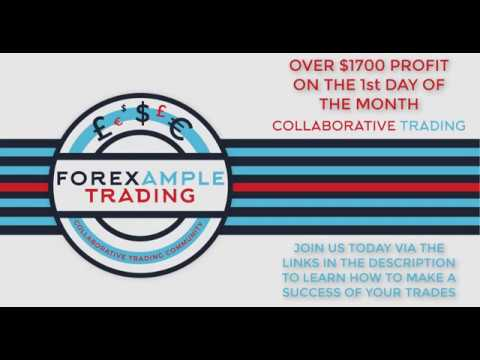 Learn forex live signal