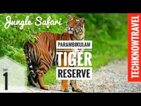 A jungle Safari in Parambikulam Tiger Reserve, Kerala