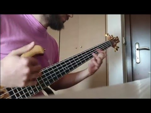 Primus-american life bass cover