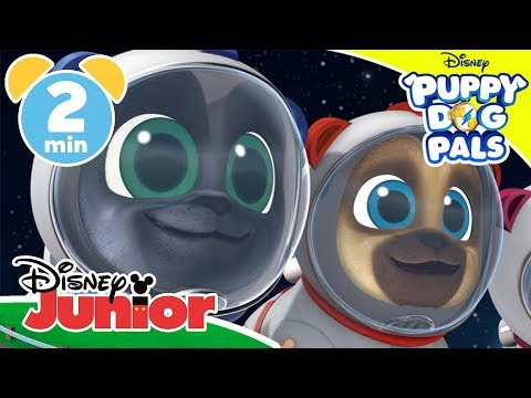 Puppy Dog Pals | Visiting Outer Space 🚀 | Disney Junior UK