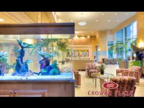 Crowne Plaza Orlando Universal Hotel.mpg