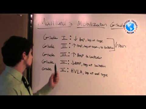 Maitland Mobilization Grades