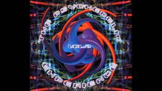 The Psychedelic Experience 2 [FULL ALBUM]