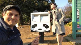 Tokyo's Ueno Zoo w/ Pandas