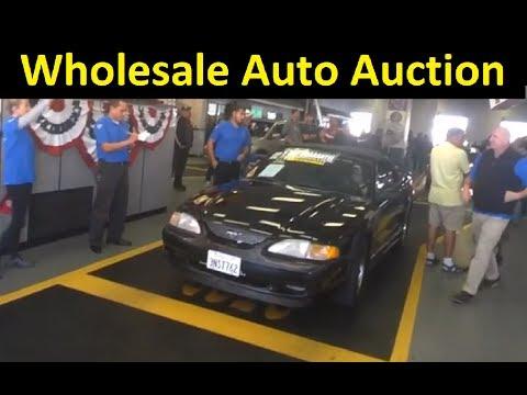 DEALER ONLY WHOLESALE AUTO AUCTION CAR SALES PREVIEW VIDEO