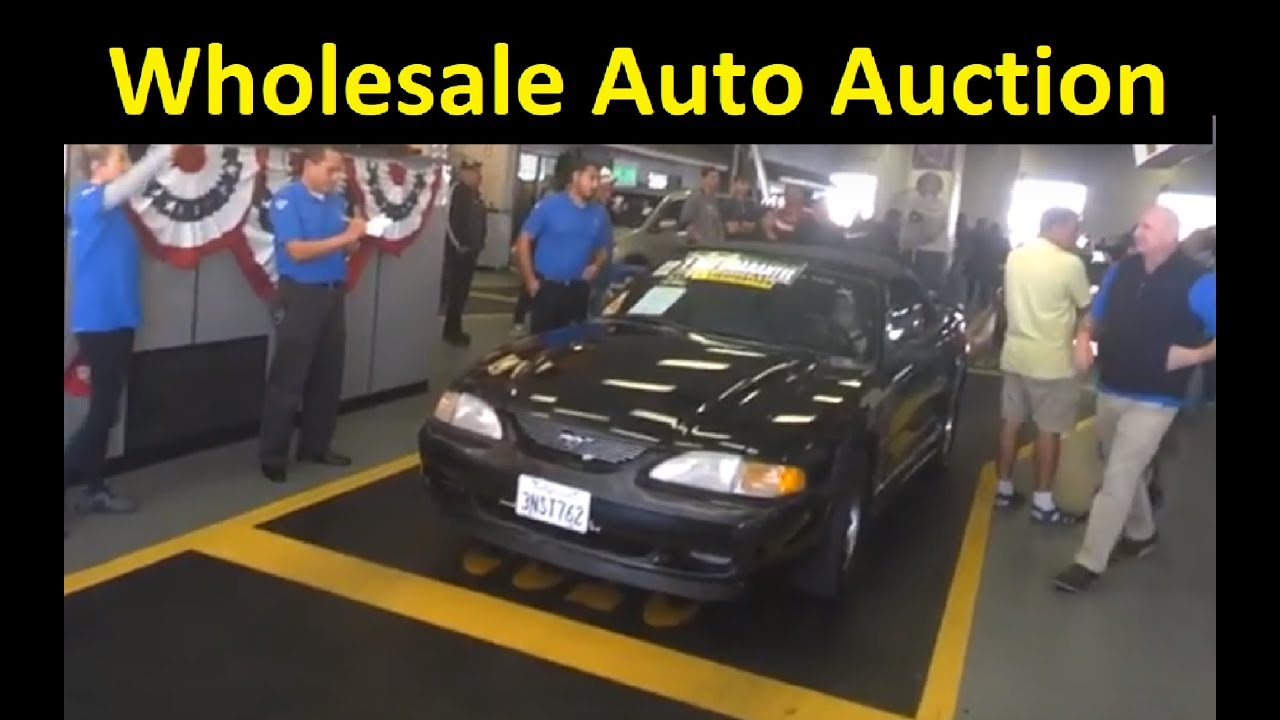 Dealer Only Wholesale Auto Auction Car Sales Preview Video Youtube