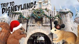 Disneyland Christmas 2018 Rides and Attractions Vlog