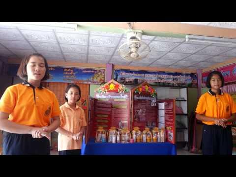 นำเสนอโครงงานอาชีพโรงเรียนบ้านสระน้ำส้ม
