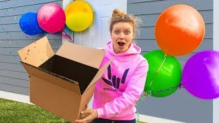 What's inside the Sharer Family Mystery Box? NEW SURPRISE REVEAL!!