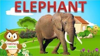 Bé học các con vật bằng Tiếng Anh | hình ảnh và tiếng kêu động vật |Dạy tiếng anh cho trẻ em