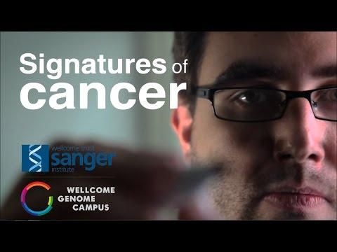 Signatures of cancer - Sanger Institute