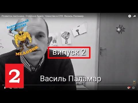Навчання бджільництву. Отруєння бджіл. Членство в СПУ. Василь Паламар.