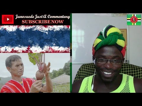 The Royal Project of Thailand Junosuede Reaction
