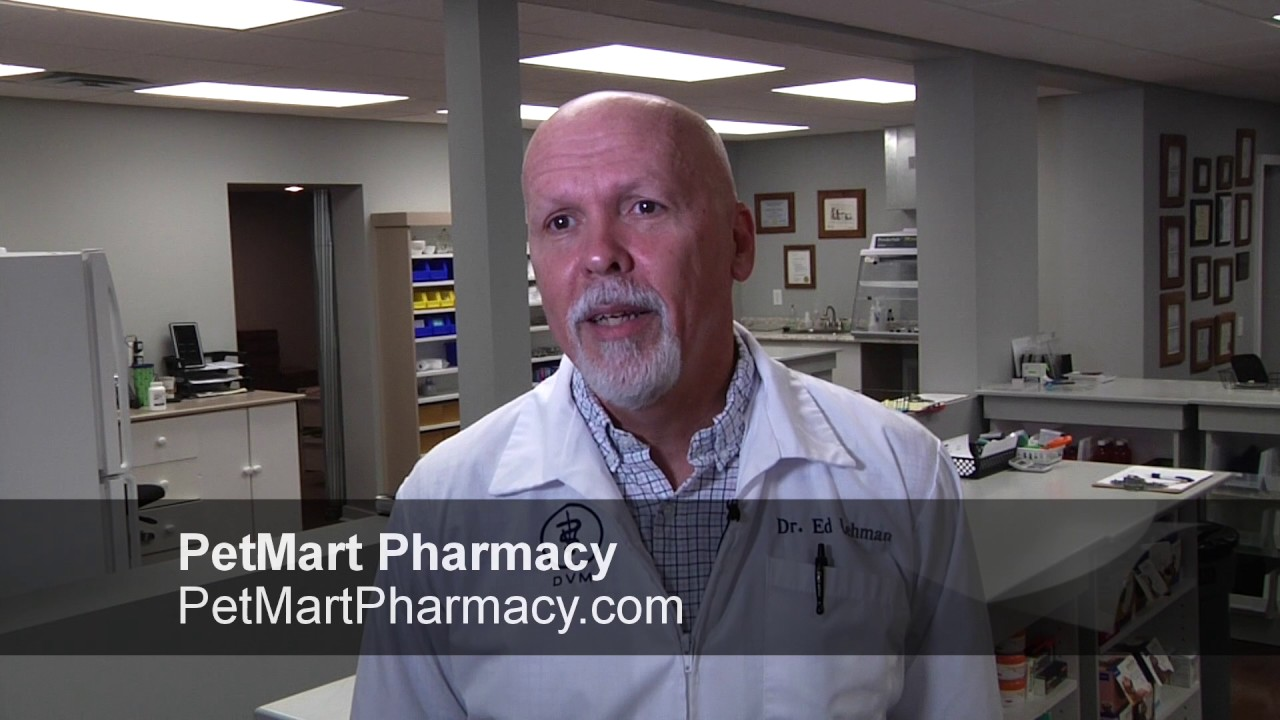 Joint Medication for Dogs (Carprofen) - YouTube