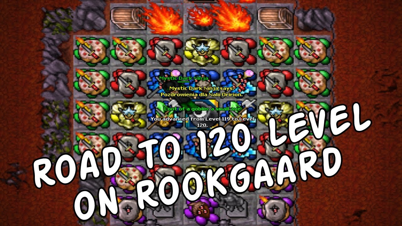 Mystic Dark Ninja (MDN') - Road to level 120 on Rookgaard Tibia Vunira