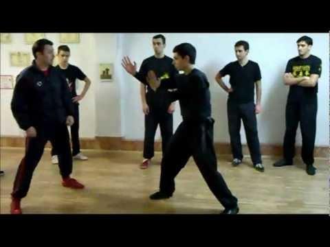 WING CHUN Sifu Goran Mitreski - Wooden dummy application