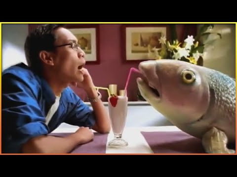 Funniest Fish Commercials 🐟