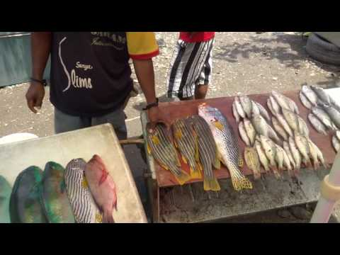 Fish Market, Dili, East Timor - Travel Extra